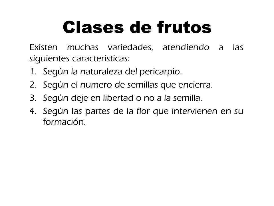 Clases de frutos Existen muchas variedades, atendiendo a las siguientes características: Según la naturaleza del pericarpio.