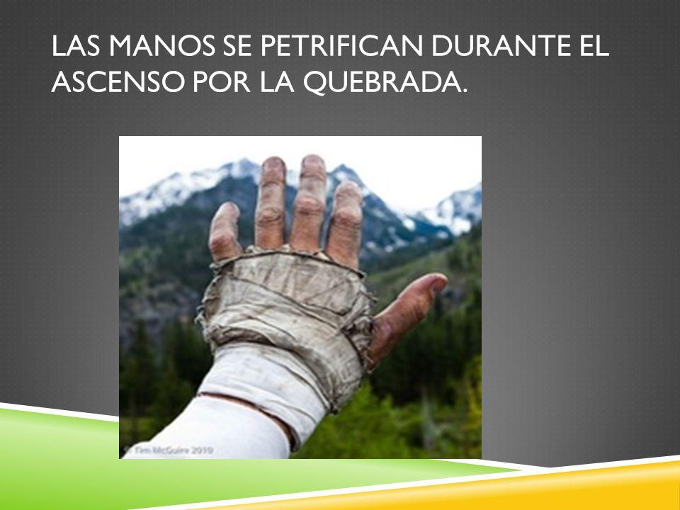 Las manos se petrifican durante el ascenso por la quebrada.