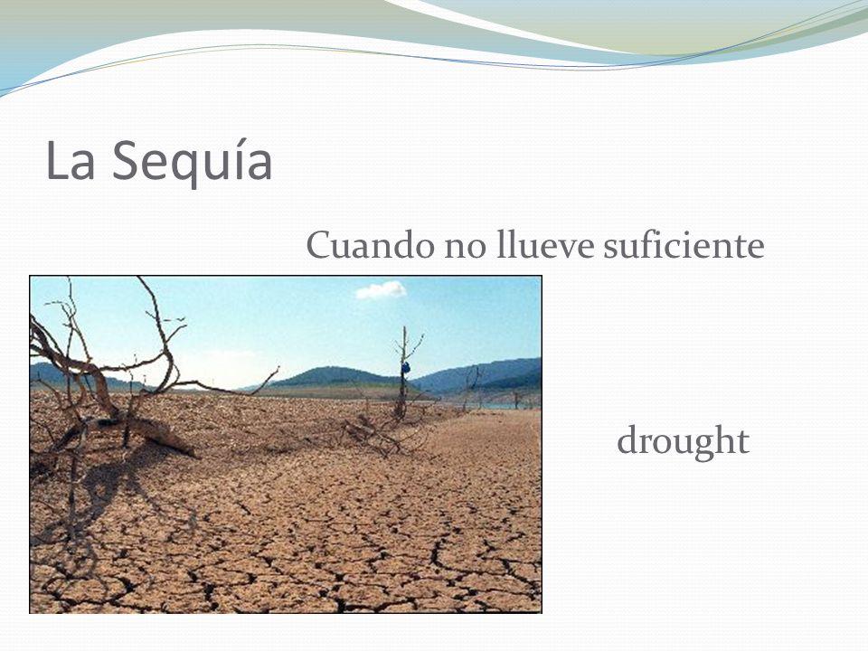 La Sequía Cuando no llueve suficiente drought