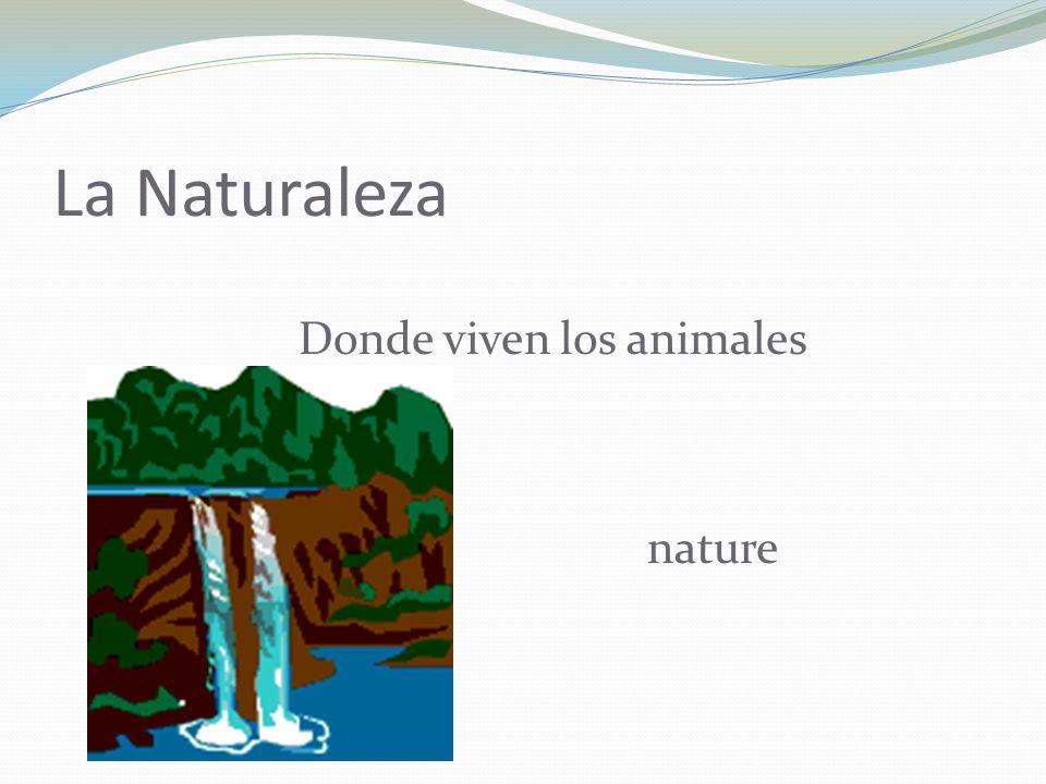La Naturaleza Donde viven los animales nature