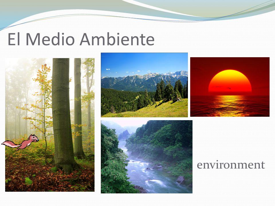 El Medio Ambiente environment