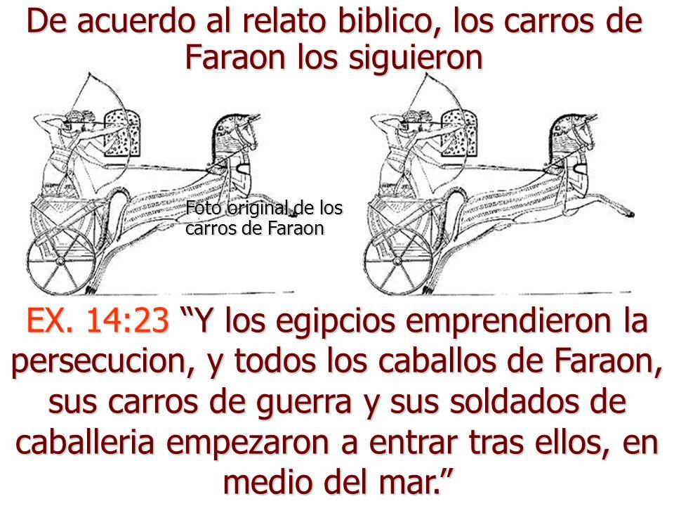 De acuerdo al relato biblico, los carros de Faraon los siguieron