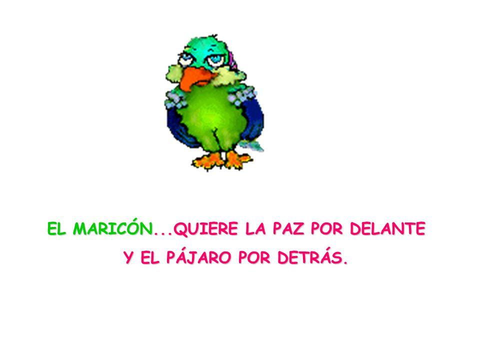 EL MARICÓN...QUIERE LA PAZ POR DELANTE