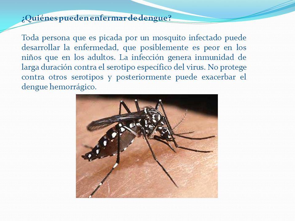 ¿Quiénes pueden enfermar de dengue