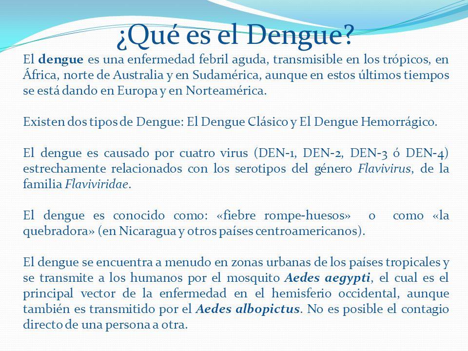 ¿Qué es el Dengue