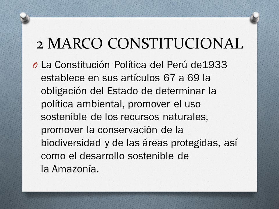 2 MARCO CONSTITUCIONAL