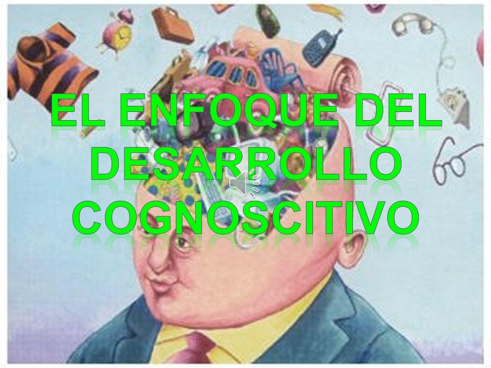 EL ENFOQUE DEL DESARROLLO COGNOSCITIVO