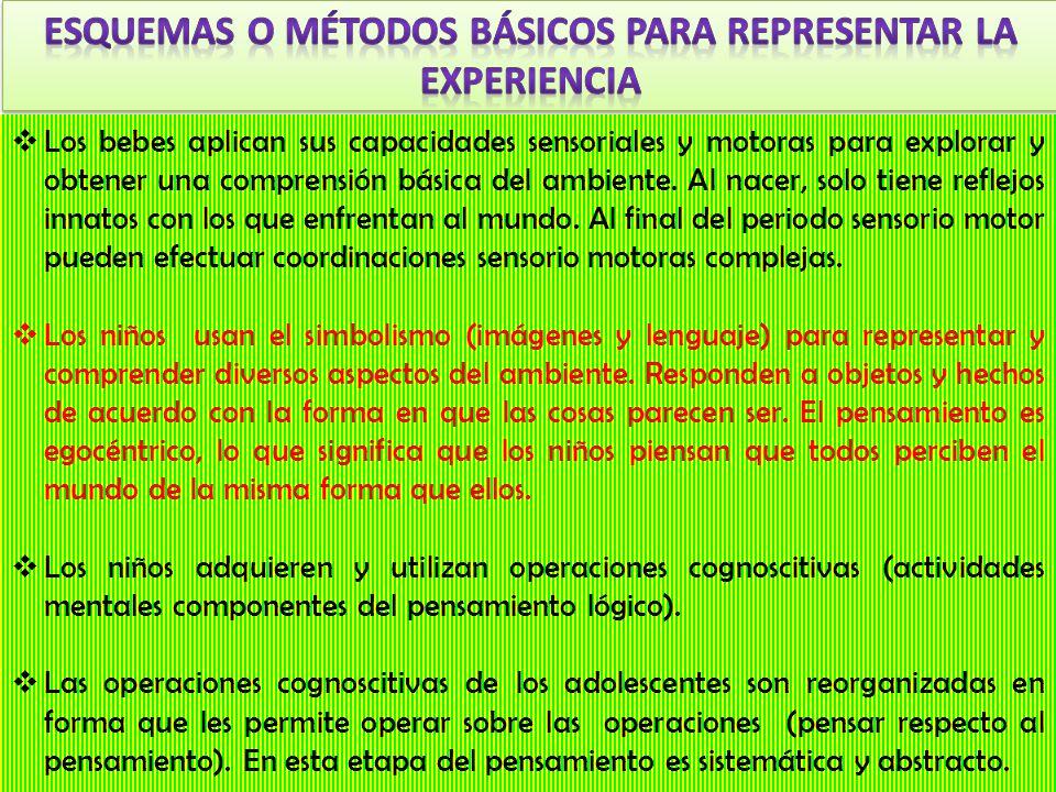 Esquemas o métodos básicos para representar la experiencia