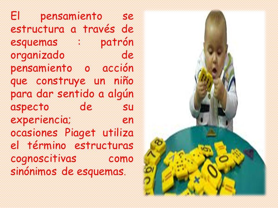 El pensamiento se estructura a través de esquemas : patrón organizado de pensamiento o acción que construye un niño para dar sentido a algún aspecto de su experiencia; en ocasiones Piaget utiliza el término estructuras cognoscitivas como sinónimos de esquemas.