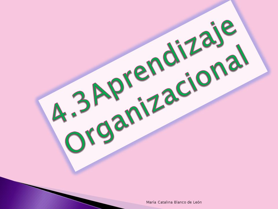 4.3Aprendizaje Organizacional