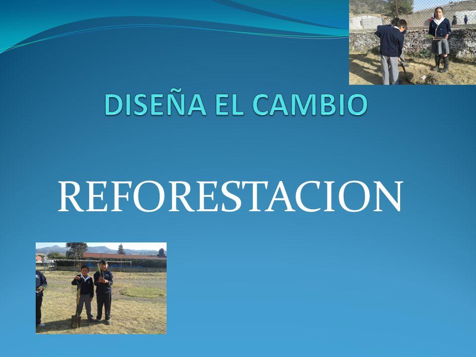 DISEÑA EL CAMBIO REFORESTACION