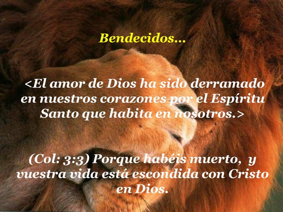 Bendecidos… <El amor de Dios ha sido derramado en nuestros corazones por el Espíritu Santo que habita en nosotros.>