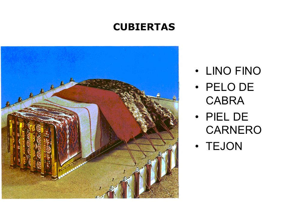 CUBIERTAS LINO FINO PELO DE CABRA PIEL DE CARNERO TEJON