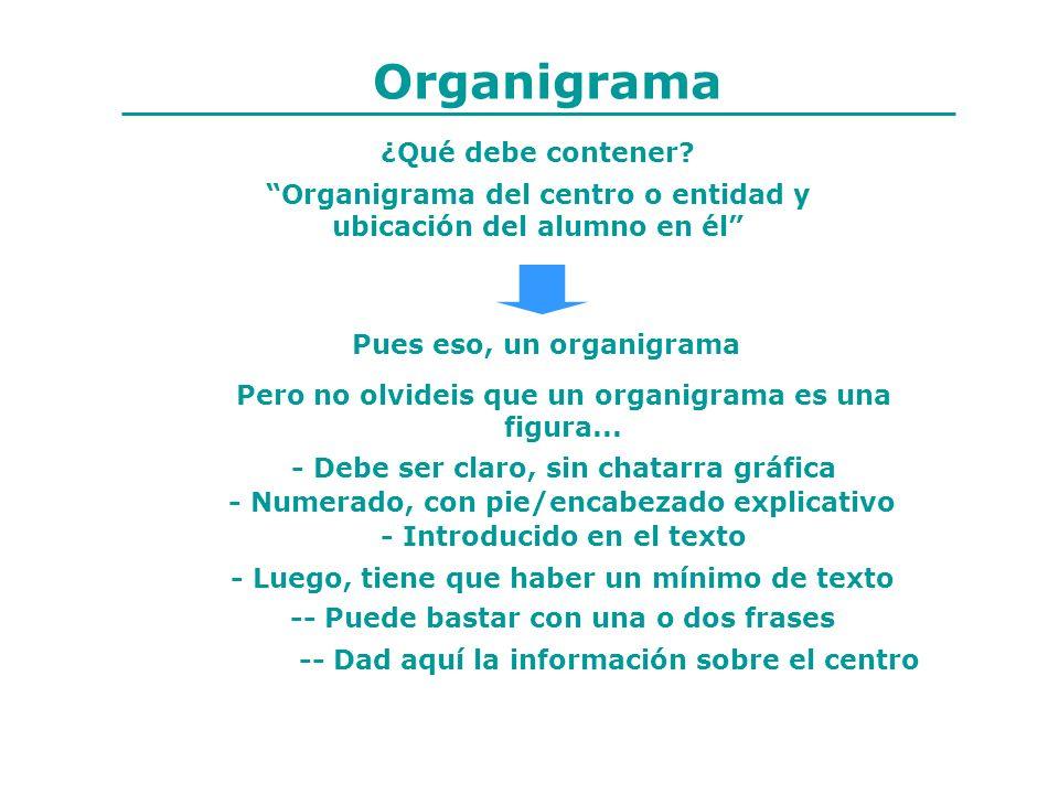 Organigrama ¿Qué debe contener