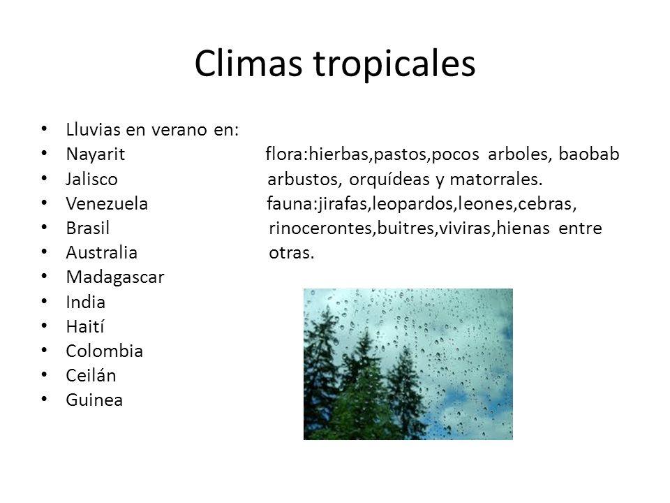 Climas tropicales Lluvias en verano en: