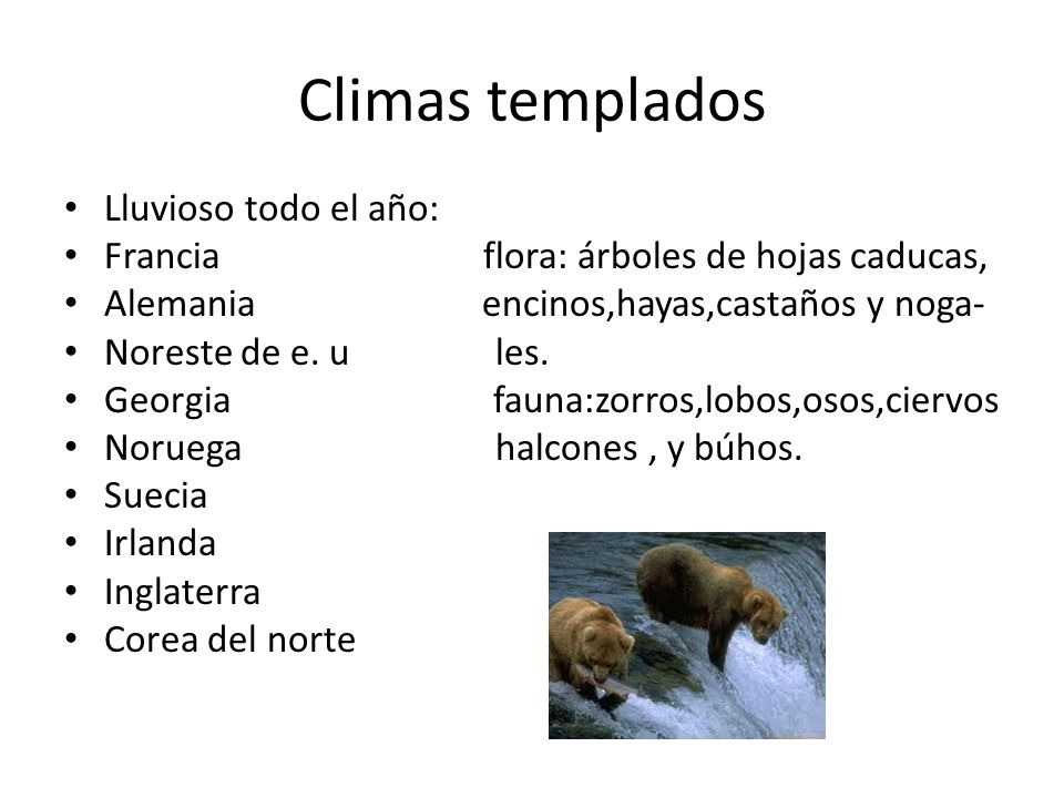 Climas templados Lluvioso todo el año: