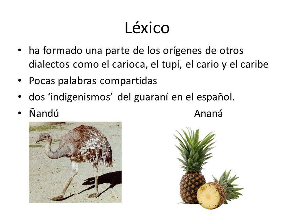 Léxico ha formado una parte de los orígenes de otros dialectos como el carioca, el tupí, el cario y el caribe.