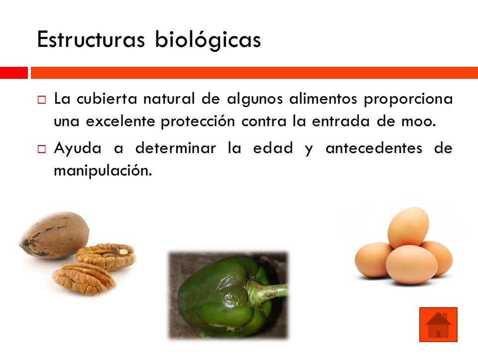 Estructuras biológicas