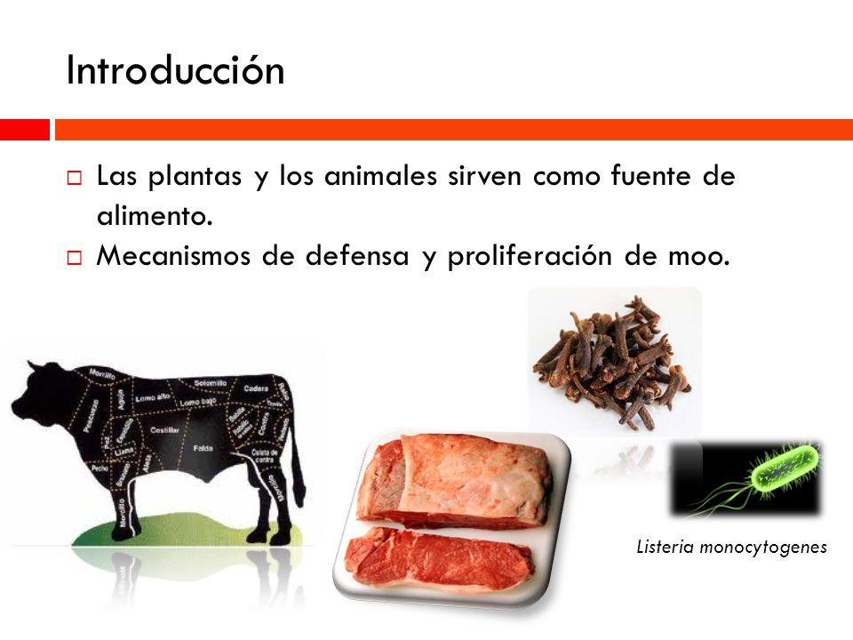 Introducción Las plantas y los animales sirven como fuente de alimento. Mecanismos de defensa y proliferación de moo.