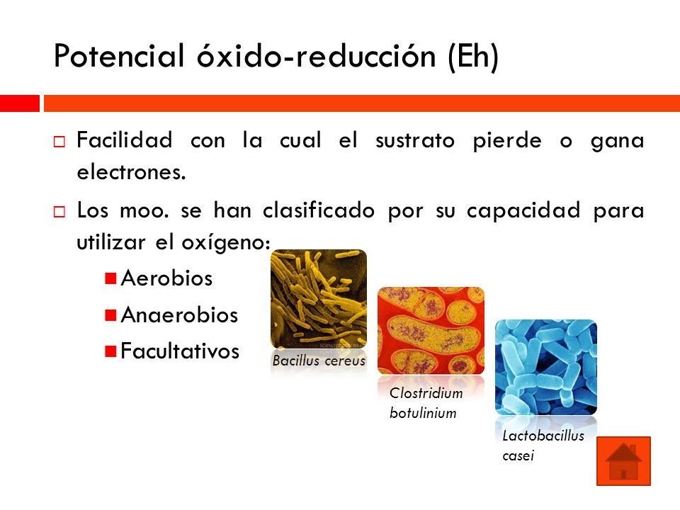 Potencial óxido-reducción (Eh)