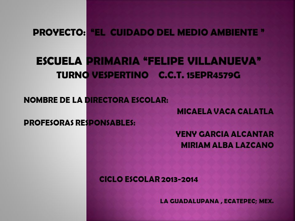 ESCUELA PRIMARIA FELIPE VILLANUEVA