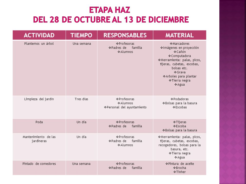 ETAPA HAZ DEL 28 DE OCTUBRE AL 13 DE DICIEMBRE