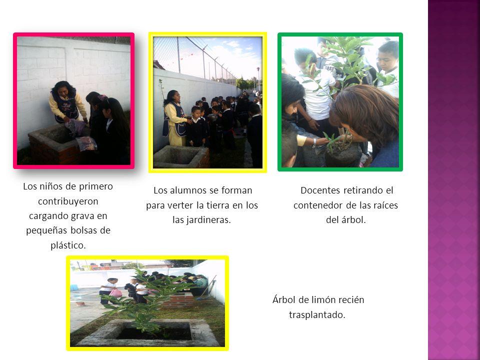 Los alumnos se forman para verter la tierra en los las jardineras.