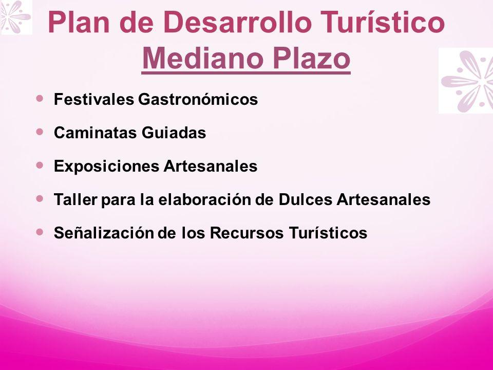 Plan de Desarrollo Turístico Mediano Plazo