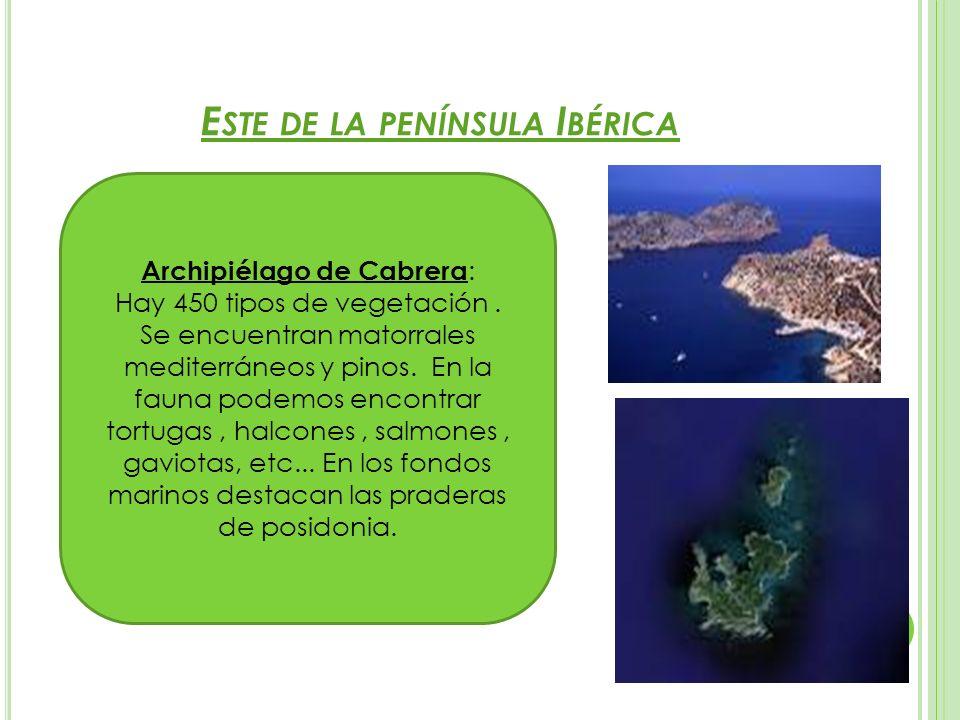 Este de la península Ibérica
