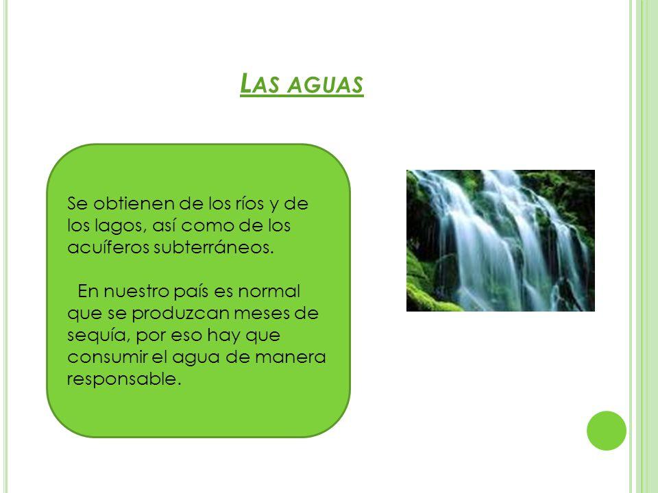 Las aguas Se obtienen de los ríos y de los lagos, así como de los acuíferos subterráneos.