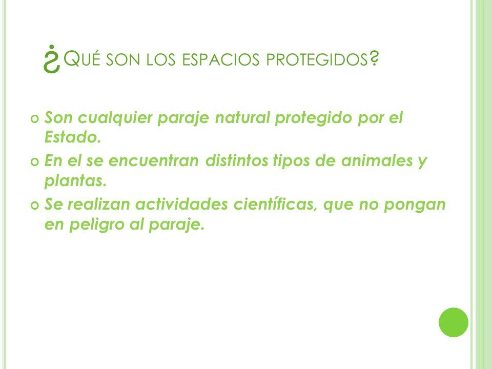 ¿Qué son los espacios protegidos