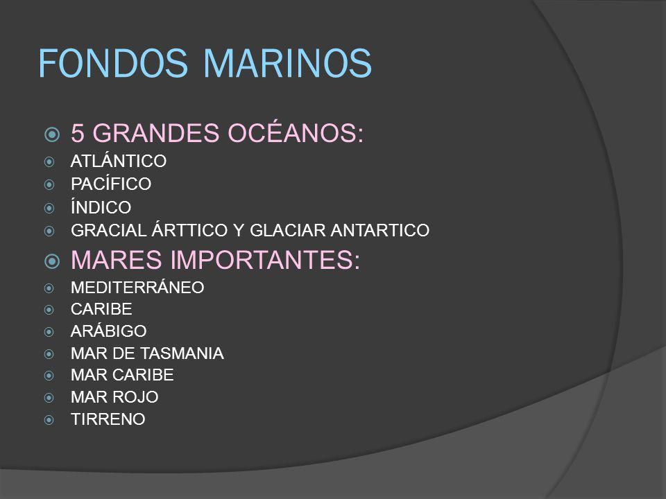 FONDOS MARINOS 5 GRANDES OCÉANOS: MARES IMPORTANTES: ATLÁNTICO