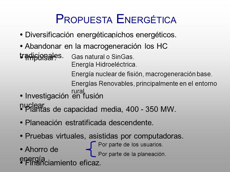 PROPUESTA ENERGÉTICA  Diversificación energética, nichos energéticos.