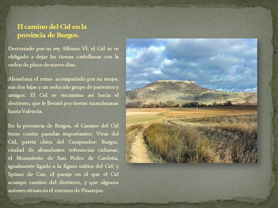 El camino del Cid en la provincia de Burgos.
