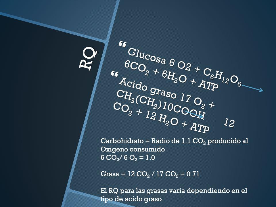 RQ Glucosa 6 O2 + C6H12O6 6CO2 + 6H2O + ATP