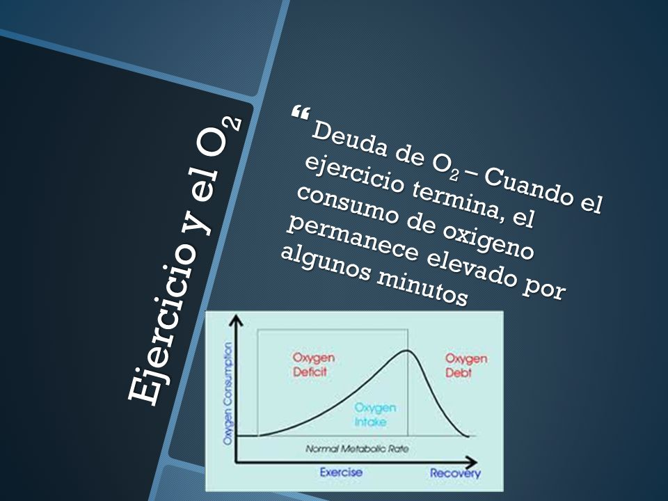 Deuda de O2 – Cuando el ejercicio termina, el consumo de oxigeno permanece elevado por algunos minutos