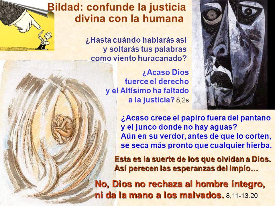 Bildad: confunde la justicia divina con la humana