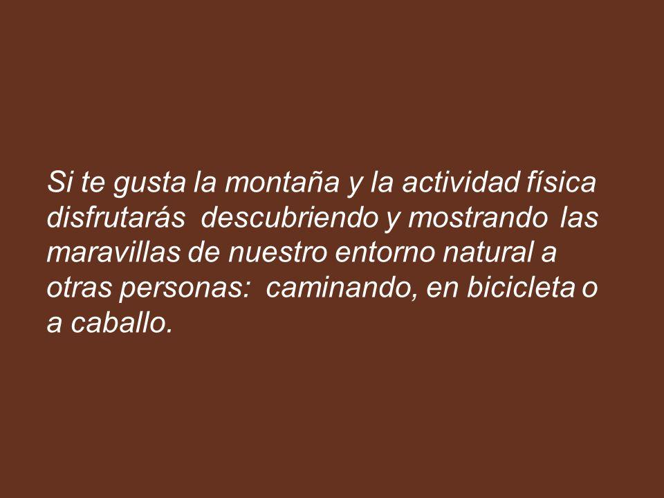 Si te gusta la montaña y la actividad física disfrutarás descubriendo y mostrando las maravillas de nuestro entorno natural a otras personas: caminando, en bicicleta o a caballo.