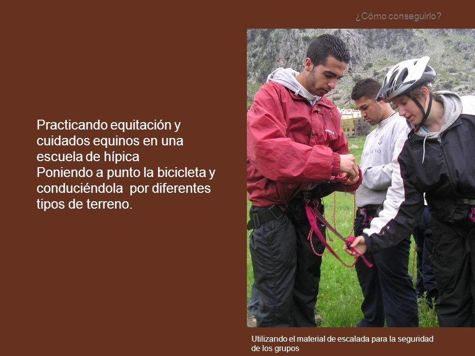 Practicando equitación y cuidados equinos en una escuela de hípica