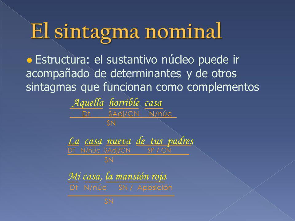 El sintagma nominal ● Estructura: el sustantivo núcleo puede ir acompañado de determinantes y de otros sintagmas que funcionan como complementos.