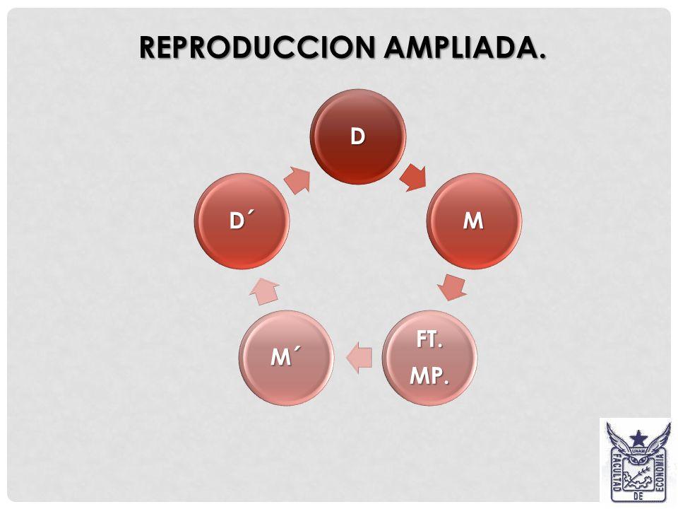 REPRODUCCION AMPLIADA.