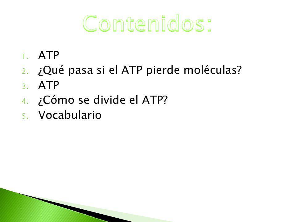 Contenidos: ATP ¿Qué pasa si el ATP pierde moléculas