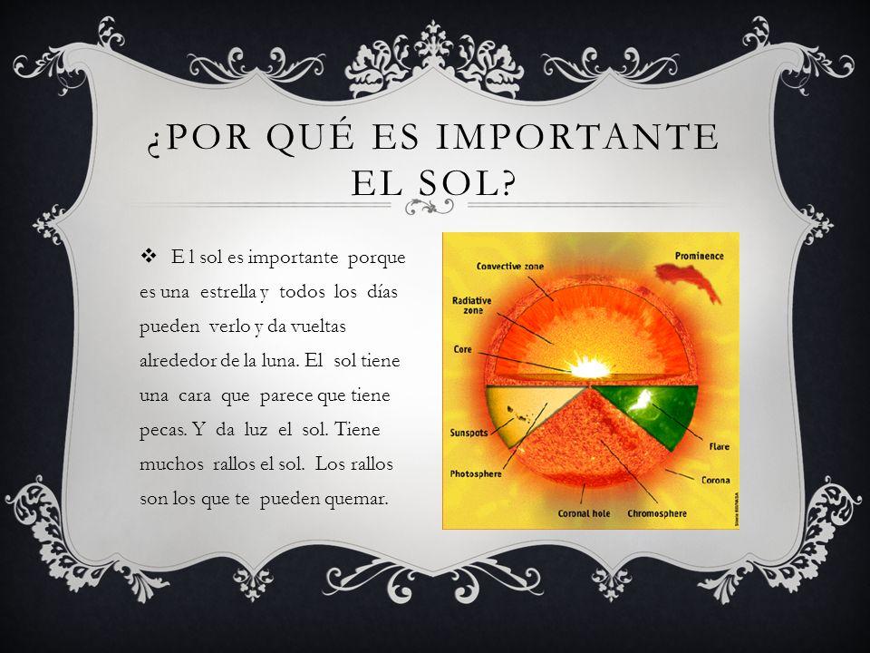 ¿Por qué es importante el sol
