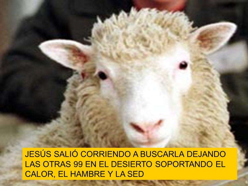 JESÚS SALIÓ CORRIENDO A BUSCARLA DEJANDO LAS OTRAS 99 EN EL DESIERTO SOPORTANDO EL CALOR, EL HAMBRE Y LA SED