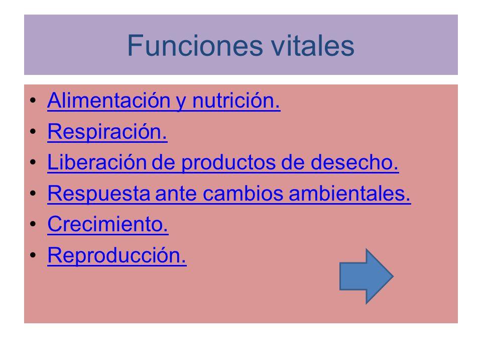 Funciones vitales Alimentación y nutrición. Respiración.