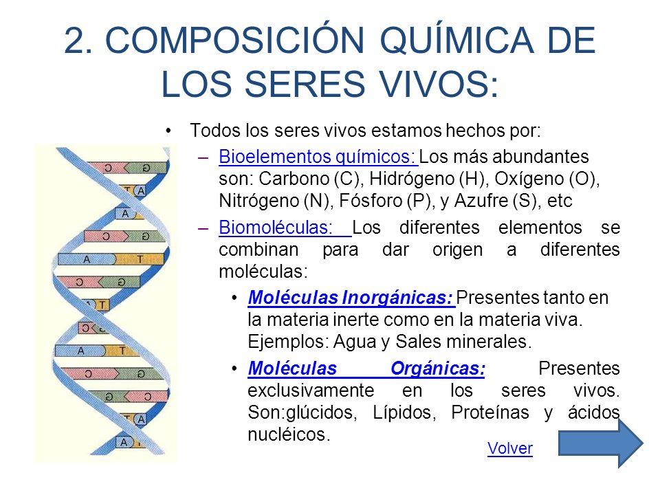 2. COMPOSICIÓN QUÍMICA DE LOS SERES VIVOS: