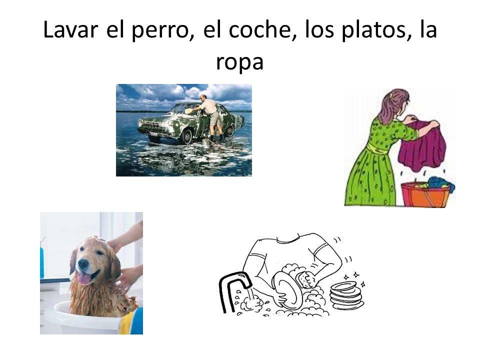 Lavar el perro, el coche, los platos, la ropa