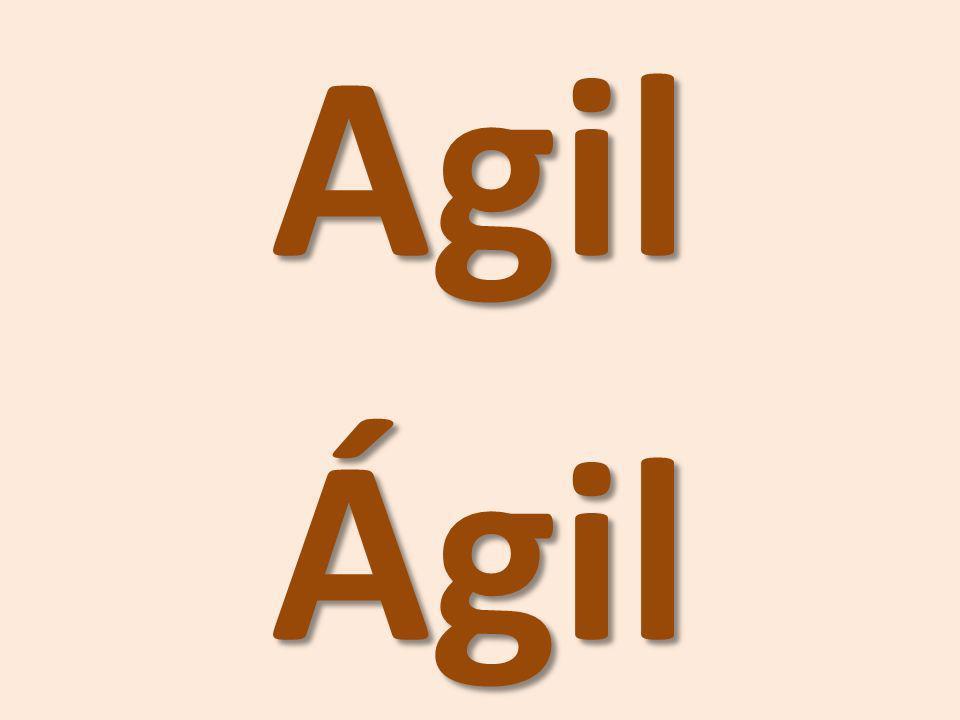 Agil Ágil