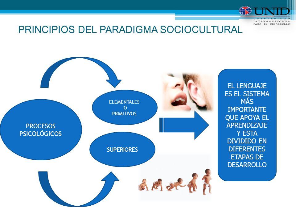 PRINCIPIOS DEL PARADIGMA SOCIOCULTURAL