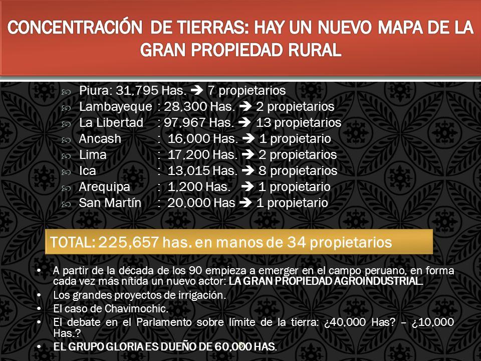 CONCENTRACIÓN DE TIERRAS: HAY UN NUEVO MAPA DE LA GRAN PROPIEDAD RURAL